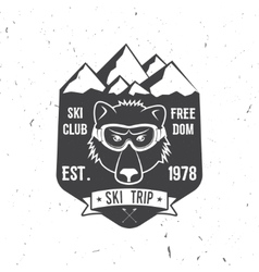 Ski club concept with bear vector