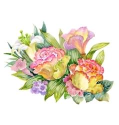 Watercolor summer garden roses blooming flower on vector