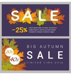 Set horizontal autumn sale banners vector