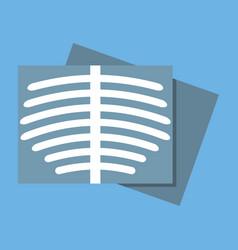 Body roentgen icon flat design vector