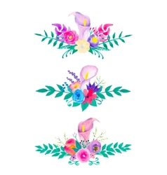 Watercolor flowers and leaves collection vector image