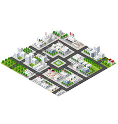 Isometric plant in 3d dimensiona vector
