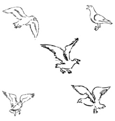 Seagulls sketch pencil drawing by hand vector