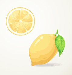Food lemon with leave vector