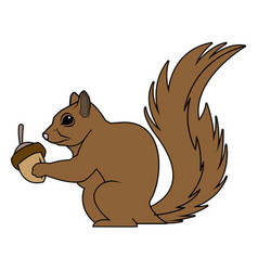 Cute squirrel eats nut nature wildlife image vector