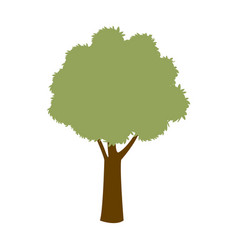 Green tree season plant forest nature vector