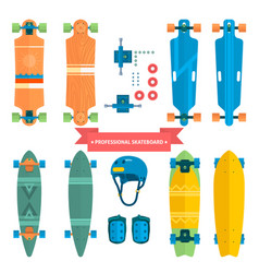 professional skateboard collection flat vector image vector image