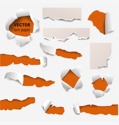 Collection of torn edges of a hole paper vector