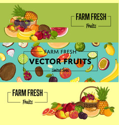 Farm fresh fruit flyers set vector