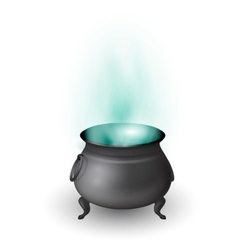 Cartoon Halloween witch cauldron with potion vector image