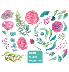 Watercolor beautiful floral collection vector