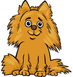 Pomeranian dog cartoon vector