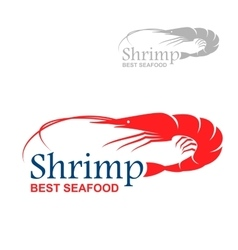 Best seafood badge design with royal red shrimp vector