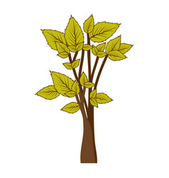Green leafy tree forest icon vector