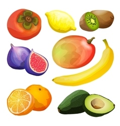 Exotic fruits set vector