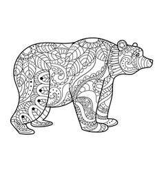 bear coloring book vector image vector image