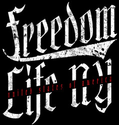 Freedom vintage slogan tee graphic design vector