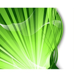 fresh rays vector image vector image