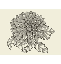 Hand drawn sketch flower vector