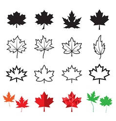 Maple leaf icons vector image vector image