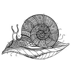 A totem animal snail on leaf in black and vector