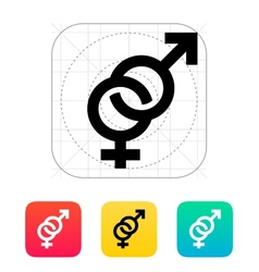 Hetero icon vector image