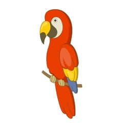 Red brazil parrot icon cartoon style vector