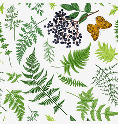 Seamless pattern with leaves berry vector