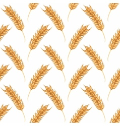 Seamless watercolor pattern with ear of wheat on vector image