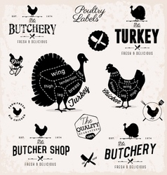 Poultry cuts diagram and butchery design elements vector