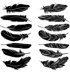 feathers silhouette set vector image vector image