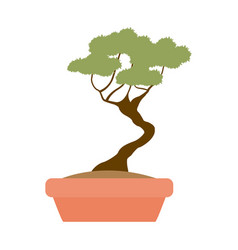 green tree pot decoration garden image vector image