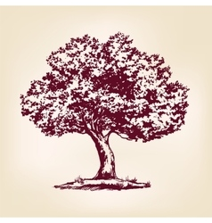 Tree hand drawn llustration realistic vector