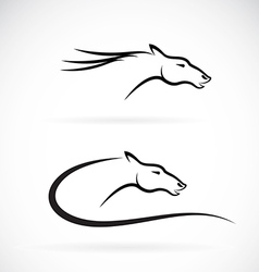 Images of horse head design vector