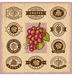 Vintage grapes stamps set vector image