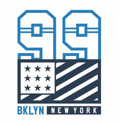 bklyn new york vector image