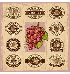 Vintage grapes stamps set vector image
