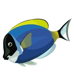 Blue tropical fish on a white background vector image