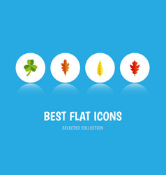 Flat icon maple set of leaf maple linden and vector