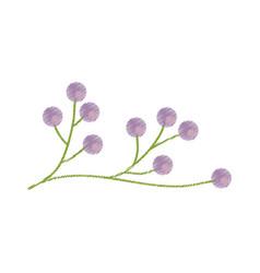 branch flower wild image sketch vector image