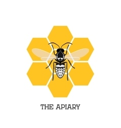 Apiary concept with bee and honeycomb vector