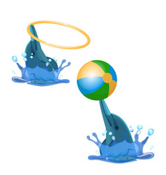 Cute trained dolphins playing with hoop and color vector
