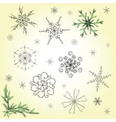 delicate snowflakes vector image vector image