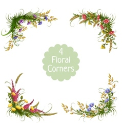 Floral corners on transparent background vector
