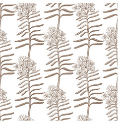 Background with wild rosemary vector
