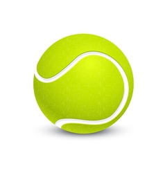 Big tennis ball vector image vector image