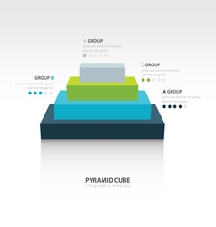Business infographics pyramid cube vector