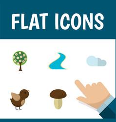 Flat icon bio set of tributary champignon vector