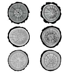 rings vector image vector image