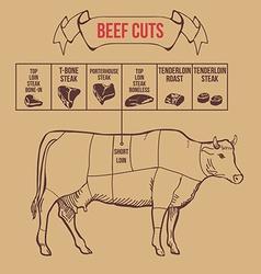 Vintage butcher cuts of beef scheme vector image
